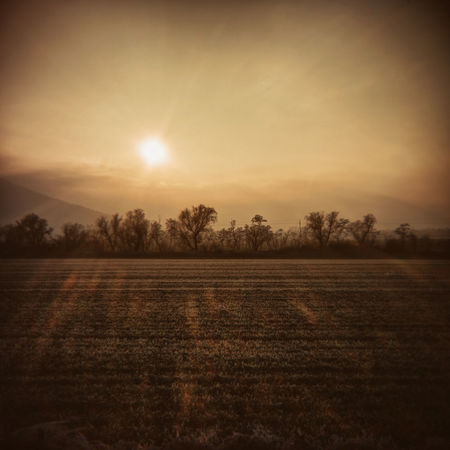 radiant land (holga lens) Holga Landscape_Collection Agriculture Beauty In Nature Day Field Holgalens Idyllic Landscape Landscape_photography Nature No People Outdoors Rural Scene Scenics Sky Sun Sunlight Sunset Tranquil Scene Tranquility Tree