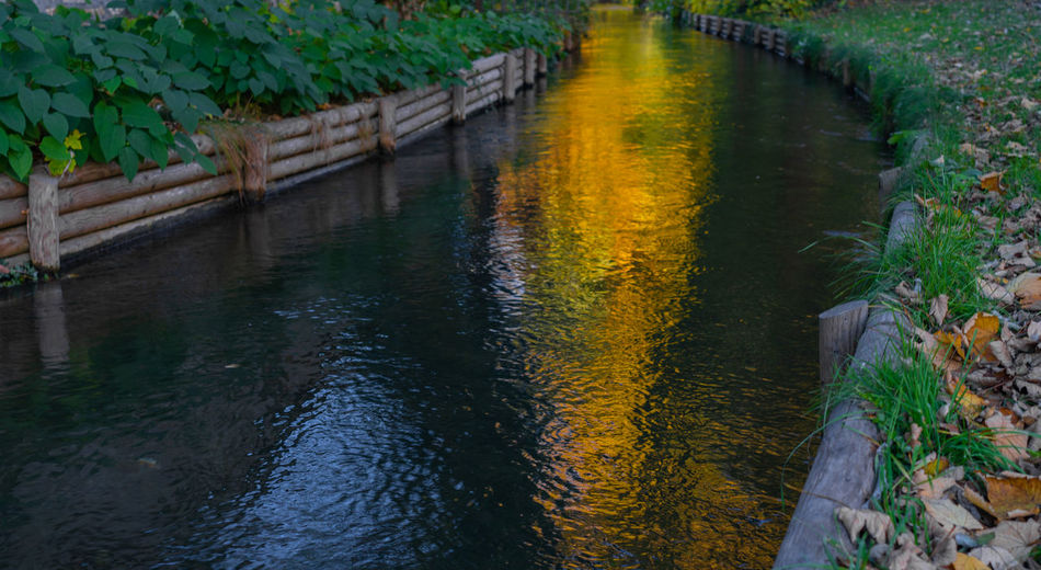 Autumn landscape in a park Water Plant Nature No People Tranquility Reflection Day Outdoors Beauty In Nature Growth Footpath Canal Tranquil Scene High Angle View Architecture Scenics - Nature Green Color Direction Flowing Water Autumn Landscape Autumn Sunset Reflections