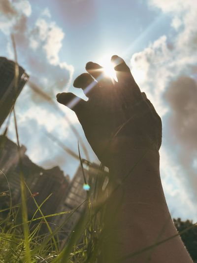 Low angle view of hand holding plant against sky