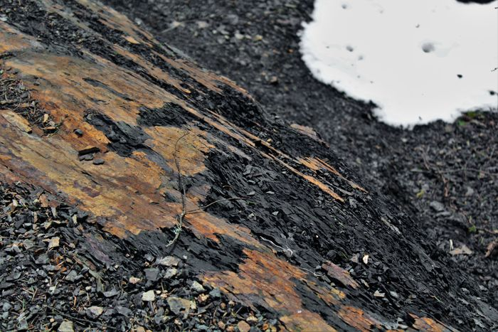 Asphalt Beauty In Nature Black Brown Canon Day High High Angle View Landscape Nature No People Outdoor Photography Outdoors Pattern Rock - Object Rockwall Rough Snow Spring Steep Stone - Object Textured  Textures Textures And Surfaces Tranquility