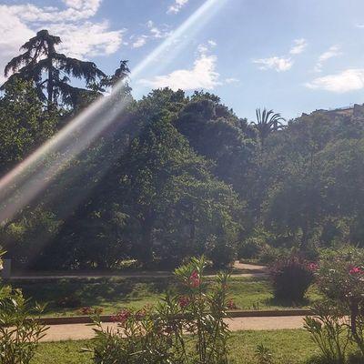 Turopark Park Parque  Puisto Barcelona Bcnexploradores Bcnexplorers Thebarcelonist Sunrays Sunny Sunnyday