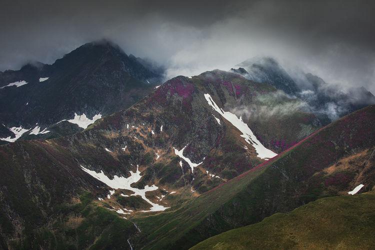 The beauty of fagaras mountains, romania. summer landscape from carpathians.