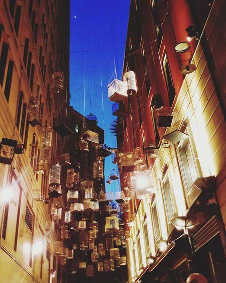 forgotten song artwork Birdcage Bird Song Forgotten Songs Art Work Sydney CBD Pitt Street In Sydney Architecture Night Building Exterior Illuminated City Built Structure Skyscraper Cityscape