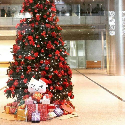 会社のクリスマスツリー 🌸 そんな季節ですね🍀 飾らない定番の飾りが好き♪