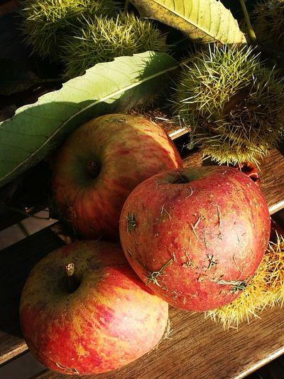 Des Pommes Et Des Marrons