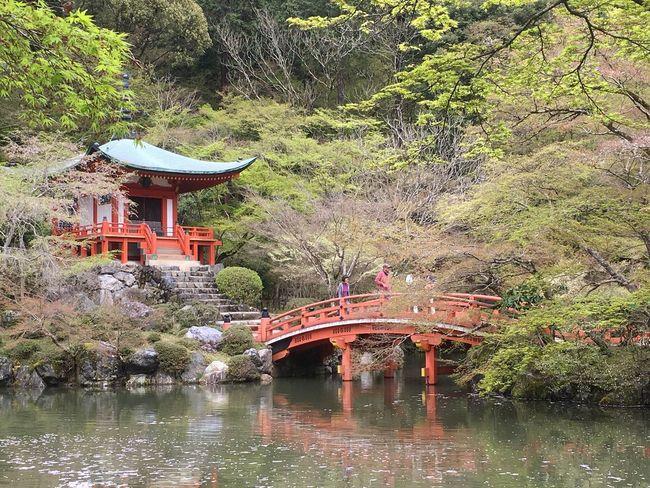 京都山科 醍醐寺