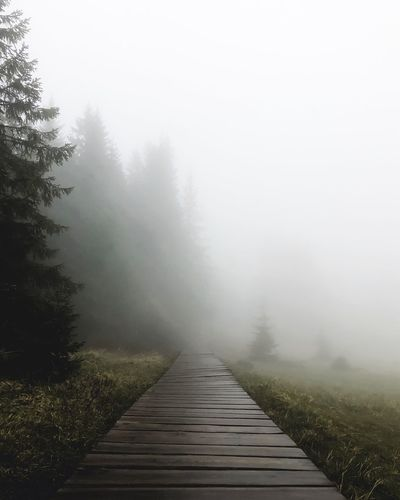 View of footpath in foggy weather