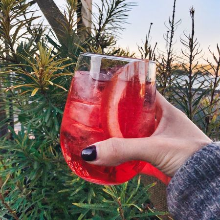 Good Life Celebration Drink Aperitivo  Cheers Human Hand Drink Hand Refreshment Holding Human Body Part Nature