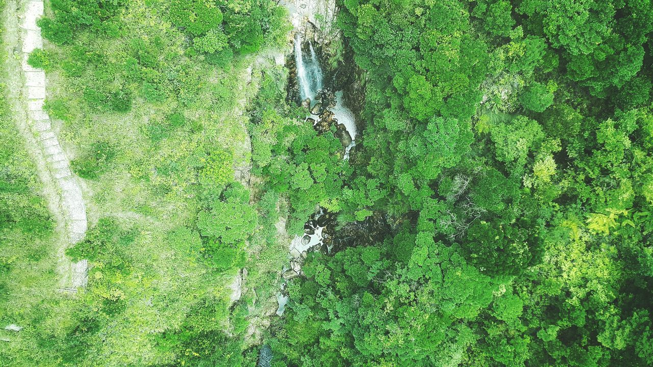 High Angle View Of Stream Amidst Trees On Mountain