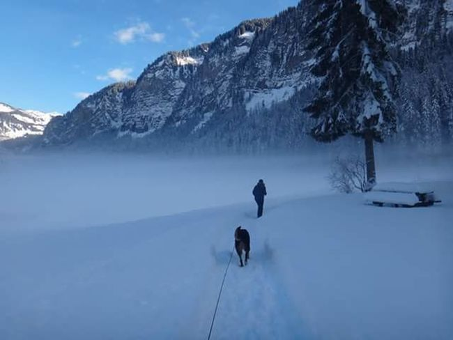 Lake Montriond France Winter Wonderland