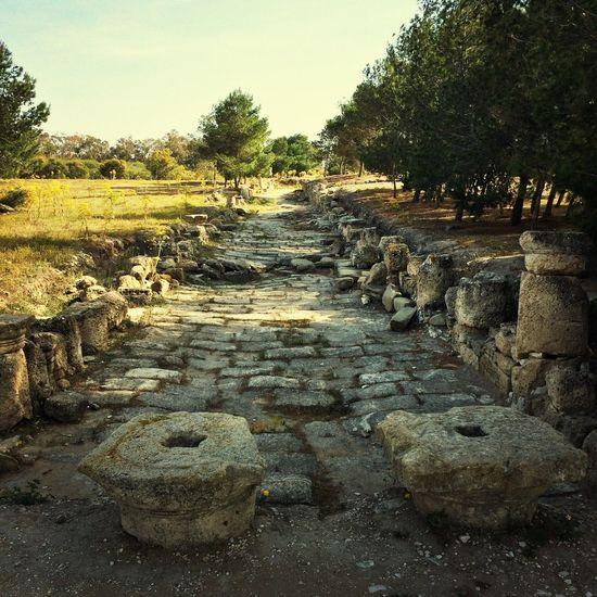Eski Eserler Ve Müzeler Famagusta Muzeum salamis