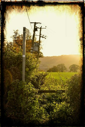 Dursley Gloucestershire Taking Photos Enjoying Life Autumn Colors This Is Where I Live... My Gloucestershire Autumn Glow