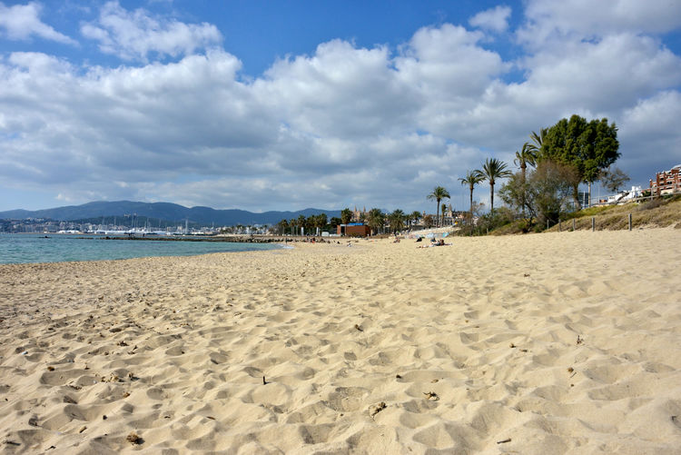 panoramic view of a sandy beach with palms and blue sea Land Beach Sand Beauty In Nature Sea Scenics - Nature Tranquil Scene Tranquility Vacations Outdoors Trip Nature Holiday Cloud - Sky Palma De Mallorca Tropical Palm Tree Panoramic View Relaxing
