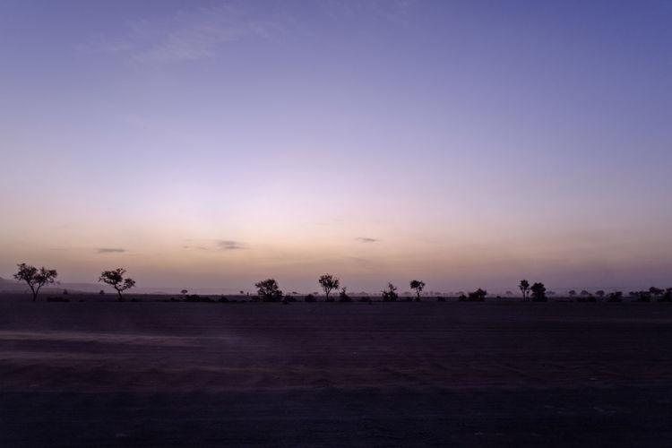 Beauty In Nature Day Desert Landscape Morning Morning Light Nature Outdoors Pastel Pastel Power Scenics Silhouette Sky Sunrise Trees