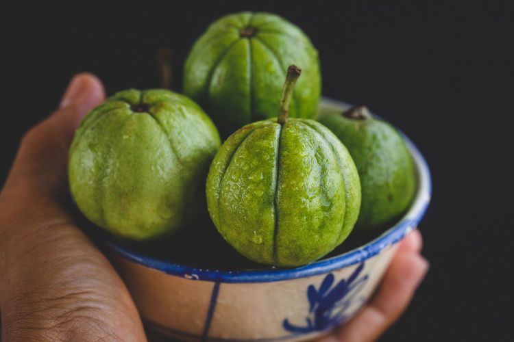 Cropped hand of person holding bowl with wet guavas against black background