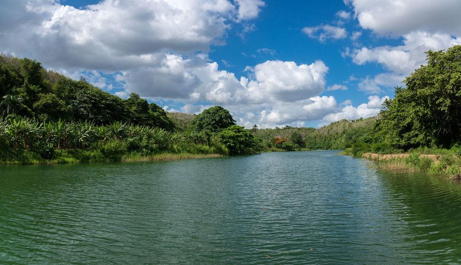 Boatage at Chavon River - Dominican Republic - Caribbean Chavon Dominican Republic Nature Travel Anaconda Caribbean Chavon Rive Jungle Landscape Punta Cana Rainforest Troppical