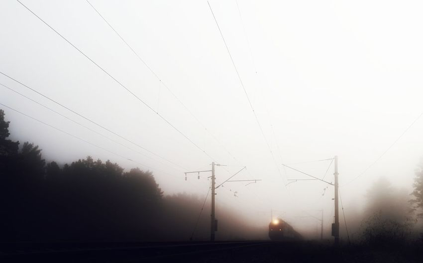 Fog Cable Power Line  No People Electricity  Nature Outdoors Tree Electricity Pylon Technology Trein Forest Low Angle View Light And Shadow