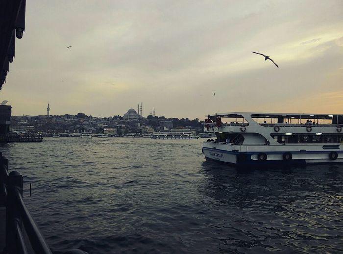Eminönü/ İstanbul Türkiye✔