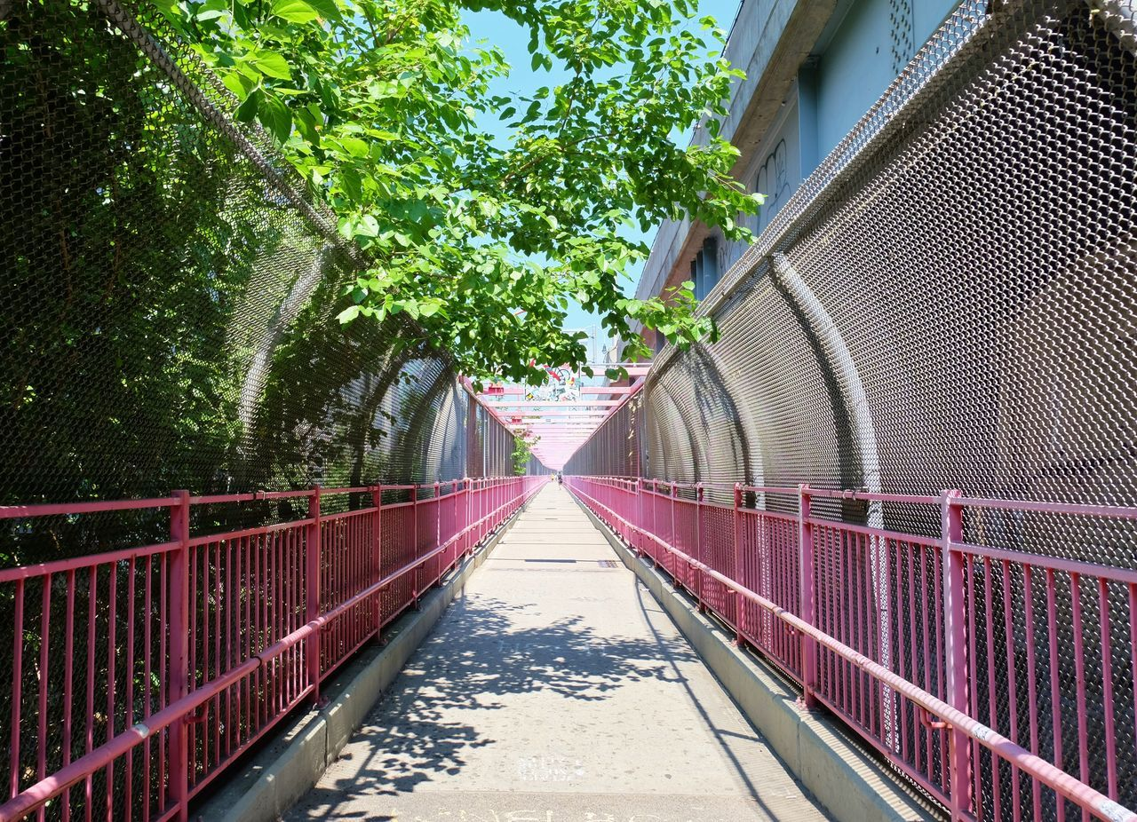 the way forward, architecture, built structure, day, railing, outdoors, no people, building exterior, tree, footbridge, walkway, city, sky