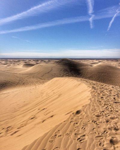 Footsteps in the desert EyeEm Team EyeEm Best Shots EyeEm Gallery Desert Sand Land Sky Sea Beach Scenics - Nature Beauty In Nature Sand Dune Travel Blue Summer Nature Horizon