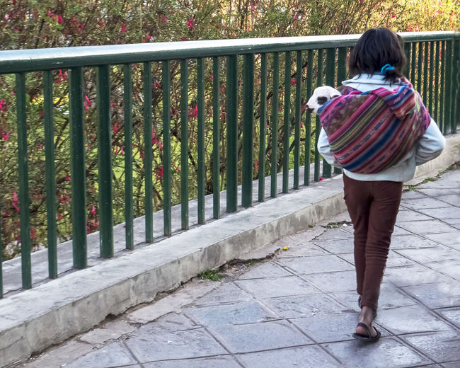 Rear View Of Girl Walking With Kid Goat On Footpath