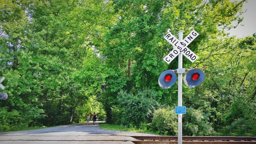 Green Color Day Outdoors Tree No People Growth Nature Grass Railroad Crossing Railroad Crossing Sign Railroad Xing Sign Caution Road People In The Distance Sommergefühle The EyeEm Collection The Premium Collection