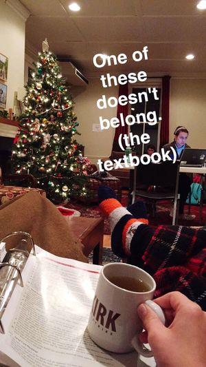 Study Hard Finals Week Christmastree Tea Eleanor  Blankets Kinda Happy Kinda Sad Definitely Stressed