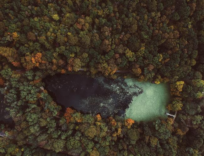 hidden lake No