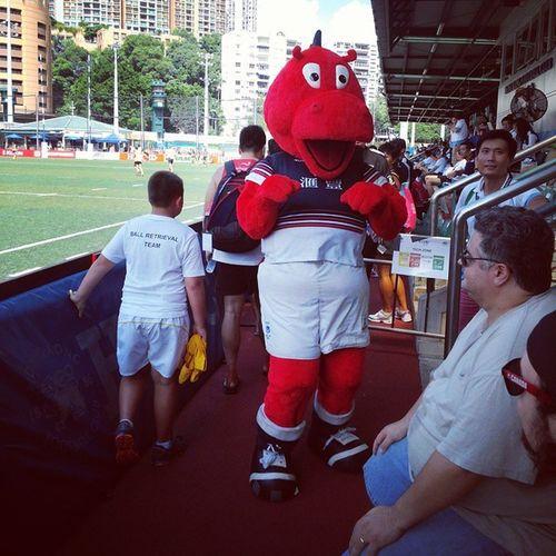 Mascot of Hong Kong Rugby Team Hkig 2014 Asian7s Mascot
