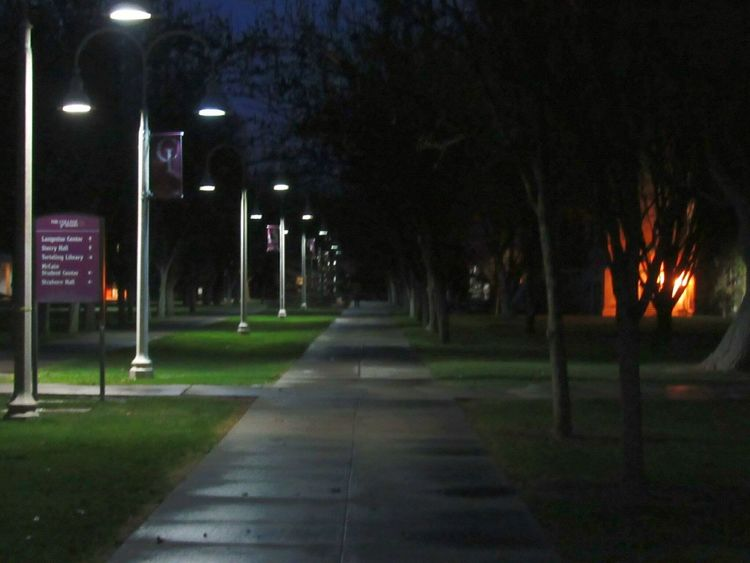 Illuminated Night Street Light Lighting Equipment No People Tree Outdoors Nightwalk Nightphotography Idahography Idaho College College Grounds College Campus EyeEm Gallery Creativity EyeEm Caldwell Eyeemphotography Eyeem Photography Getty Eyeemphotography EyeEm Getty Images Sidewalks Sidewalk Photography