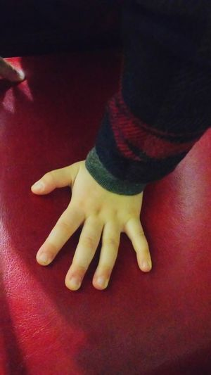 Little Girl Baby's Hand Low Section Human Leg Arts Culture And Entertainment Close-up