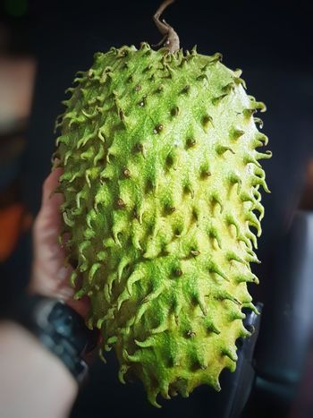 Soursop Soursop Fruit Graviola Annonaceae Annona Muricata Fruit Tropical Tropical Fruit EyeEmNewHere EyeEm Gallery EyeEm Nature Lover EyeEm First Eyeem Photo Green Color Green Spiked Thorn Close-up Green Color Plant Sharp Colorful Needle - Plant Part