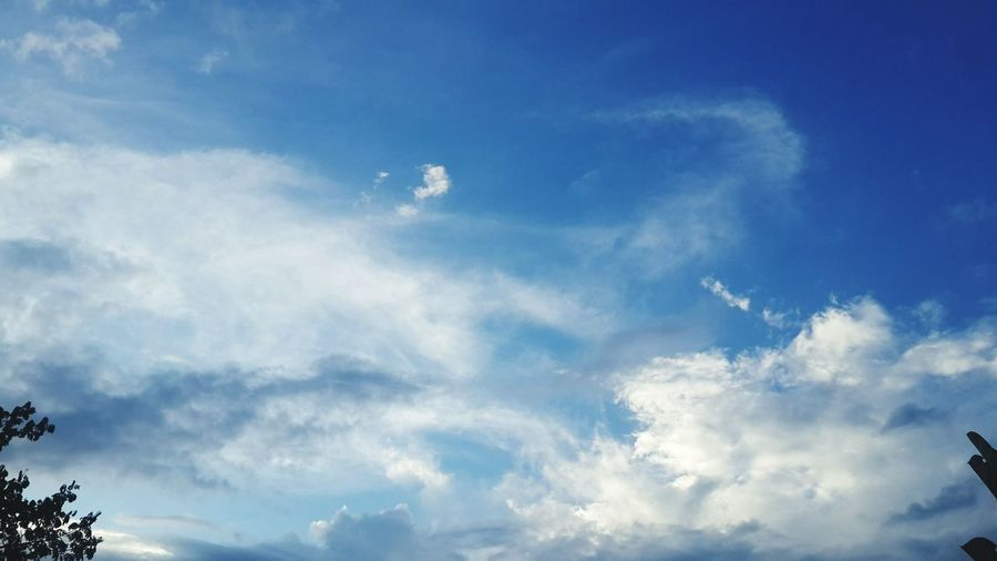 Sky go to sleep Sky Low Angle View Flying Cloud - Sky Nature No People Beauty In Nature Tranquility Outdoors Moon Day