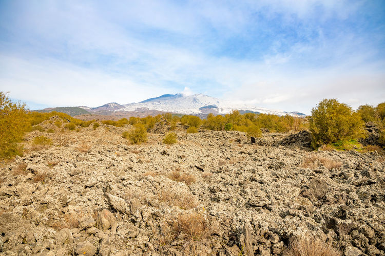 Etna Volcano Sicilia Italy Sicily Winter Snow Sky Mountain Landscape Environment Scenics - Nature Cloud - Sky Beauty In Nature Plant Tranquil Scene Nature Non-urban Scene Tranquility Day Mountain Range No People Land Rock Outdoors Solid Idyllic Mountain Peak Surface Level