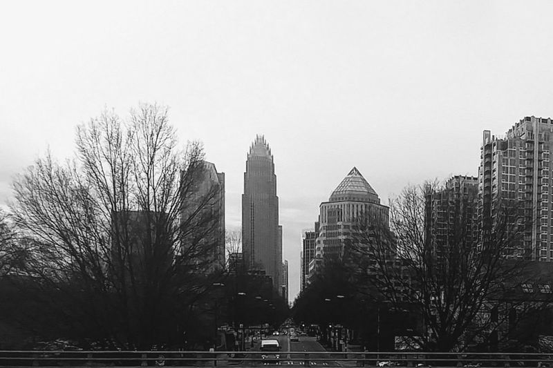 winter's end Blackandwhite Black And White Overpass Overpass View Bridge Winter's End... Skyscraper Architecture Modern Urban Skyline Tower Travel Destinations Built Structure Sky Park - Man Made Space City Tree Building Exterior Cityscape Outdoors Day No People