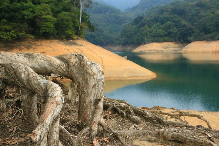 EyeEm New Here EyeEm Nature Lover EyeEmNewHere Getty Images Hiking Hong Kong Hong Kong Leisure Shun Mun Reservior The Week On EyeEm Beauty In Nature Day Mountain Nature No People Outdoors River Scenics Tranquil Scene Tranquility Tree Water