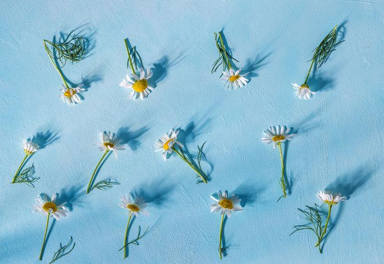 Digital composite image of blue flowers