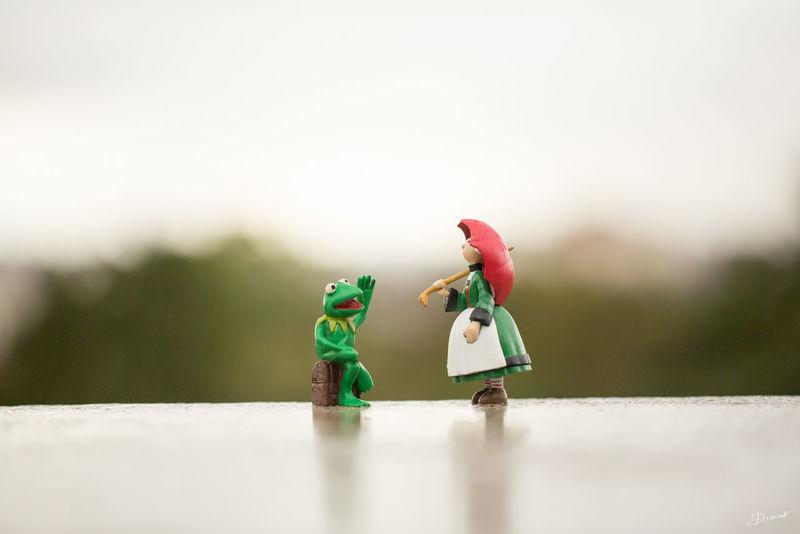 Bonne Fête Kermit