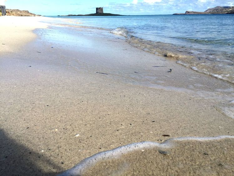 Sea Beach Water Shore Nature Beauty In Nature Sand Outdoors Horizon Over Water No People Day Scenics Wave Seashore Lapelosa Stintino Sardegna Wave Colors Wonderful Shore