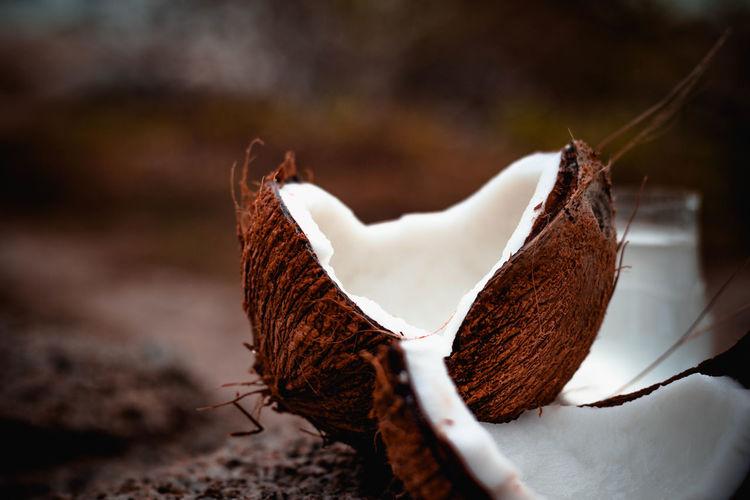 Coconut break