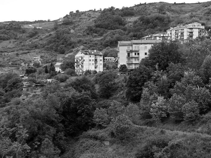 Residential buildings in the trees Black & White Hills Italia South Italy Architecture Black And White Black And White Photography Building Exterior Buildings Buildings Architecture Built Structure Calabria House Landscape Mountain Nature Outdoors Plant Residential Building Residential District Scenics Tranquility Tree Verbicaro