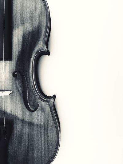 violin body White Background Violin Music Copy Space Studio Shot Indoors  Arts Culture And Entertainment Musical Instrument String Musical Instrument Close-up No People