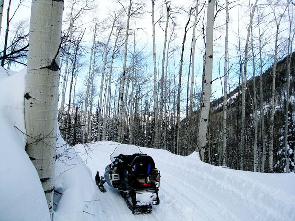 Snow Sports Aspen, Colorado Aspen Winter Wonderland Winter Photography Snowscape Adventure Club Winter Mountains Snowmobiling Snowmobile Alternative Fitness Winter Winter Sports Ride Original Experiences Take A Walk On The Way Travel Transportation Alone Sport Snow Covered Snow Sport Travel Destinations The Drive Breathing Space