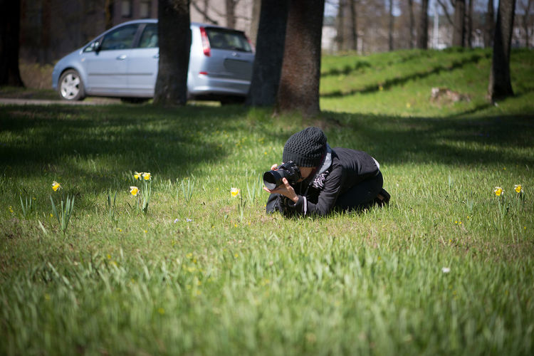Woman Photographing Daffodil