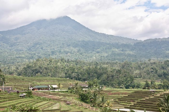 Jatiluwih, World Heritage site UNESCO Weltkulturerbe by UNESCO on Bali Agriculture Beautiful Bali Beauty In Nature Cloud - Sky Cultivated Land Farm Mountain No People Non-urban Scene Reisterrassen Rice Paddy Rice Terraces Scenics Weltkulturerbe World Heritage Site By UNESCO