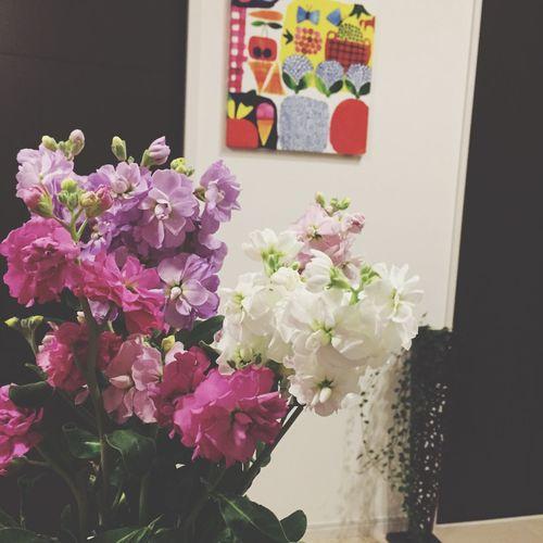 部屋中ストックのいい香り。 Flower Marimekko