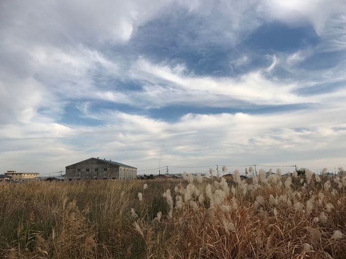 ジムの後、お外で運動🤣 Building Exterior Built Structure Architecture Sky Grass Field Cloud - Sky Nature Day No People Outdoors Landscape Tranquil Scene Tranquility Agricultural Building Behappy Japan Mortenharket Iphone7 ダイエット 日曜日 福岡県 空