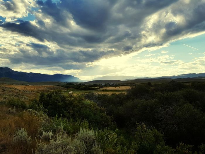 Montanacolors Tree Mountain Sunset Dramatic Sky Sky Landscape Cloud - Sky Mountain Range