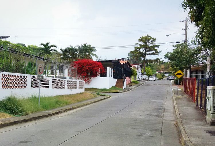 Just got out of class and saw this house with flowers, so I took a photo but I don't know do you guys like it? Wasting Time On The Road Taking Photos Hanging Out People Watching Streetphotography