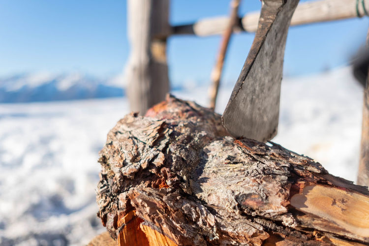 Close-up of tree trunk with axe during winter